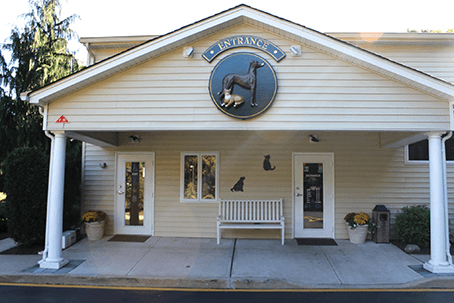 Route 516 Animal Hospital